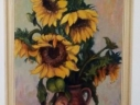 Picture sunflower